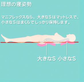 理想の寝姿勢は大きなSと小さなs