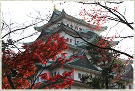 紅葉は・・やっぱり名古屋城!