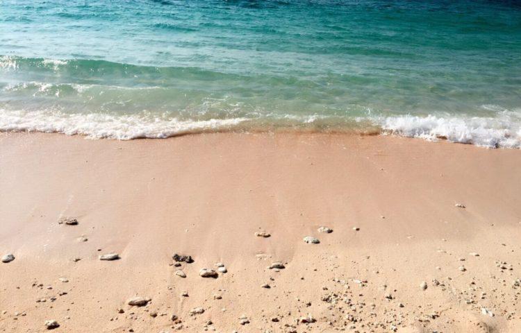 7月のテーマは 《夏休み》 〜海〜